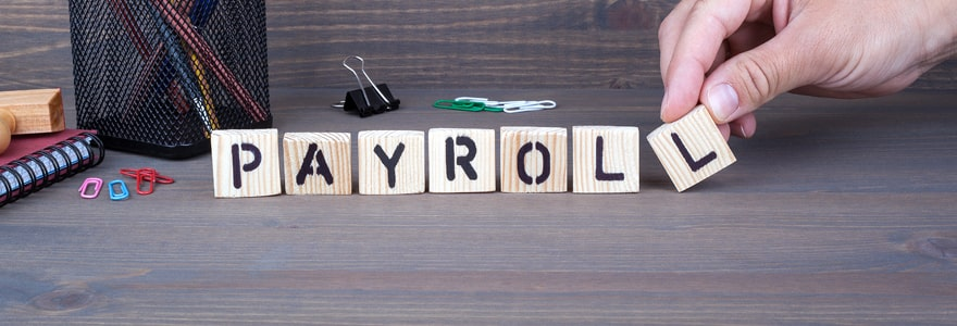 Payroll history